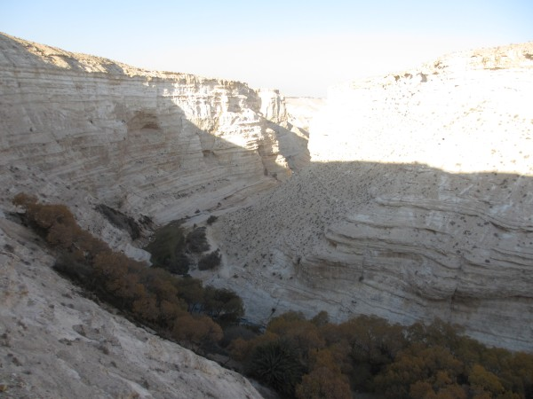 Ein Avdat National Park - 7 December 2011 - A vista from three-fourths of the way up the mountain