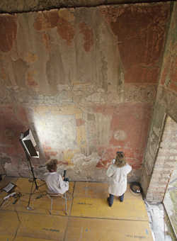 Getty Conservation Institute staff document the wall paintings in the tablinum (reception room) of the Casa del Bicentenario, Herculaneum, Italy. The information gathered, along with other data, will be used to develop a conservation plan. Photo: Scott S. Warren © J. Paul Getty Trust