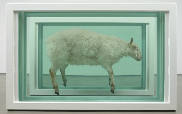 Lot 17. Damien Hirst (b. 1965)Away From the Flock (Divided) glass, painted steel, silicone, acrylic, plastic cable ties, stainless steel, sheep and formaldehyde solution Two parts each: 46½ x 73 1/8 x 20in. (118 x 186 x 51.3cm.) Executed in 1995 Estimate: £1,800,000 - £2,500,000 ($2,817,000 - $3,912,500)
