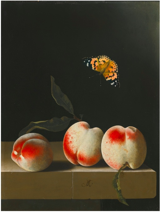 Lot 37. ADRIAEN COORTE MIDDELBURG (?) 1660 (?) - AFTER 1707 THREE PEACHES ON A STONE LEDGE, WITH A RED ADMIRAL BUTTERFLY signed with monogram lower centre: AC oil on paper, laid down on panel 31.3 by 23.3 cm.; 12 1/4  by 9 1/4  in. Estimate: 2-3 million.