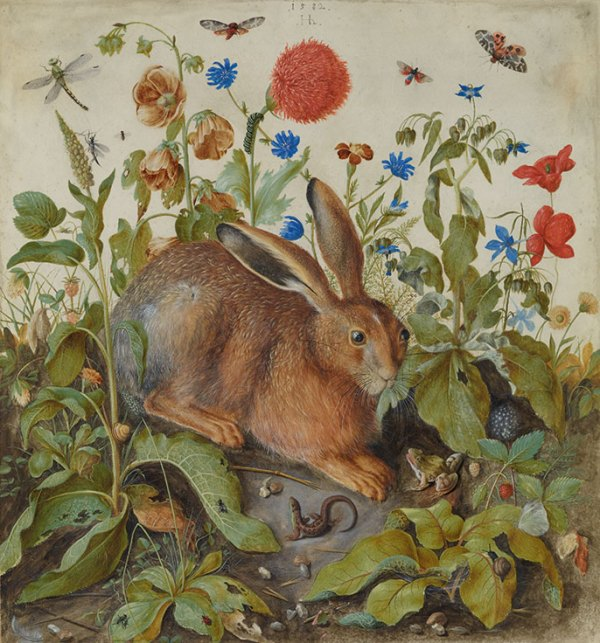 Christie's Lot 15. Hans Hoffmann (Nuremberg 1545-1591 Prague) A hare among plants signed twice with monogram and dated 'Hh / 1582' (upper centre), and '[...]582 / Hh' (below the hare) watercolour and bodycolour with gum arabic on vellum 24½ x 22 7/8 in. (62.3 x 58 cm.) Estimate: £4-6 million.