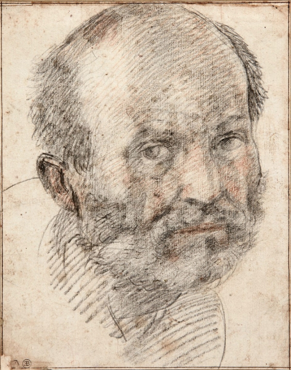 Portrait of a Middle-Aged Man, Andrea d'Angiolo, called Andrea del Sarto (1486-1530) Red and black chalk on paper: 9 x 7 inches Click on image to enlarge